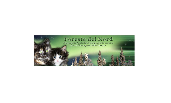 forestedelnord