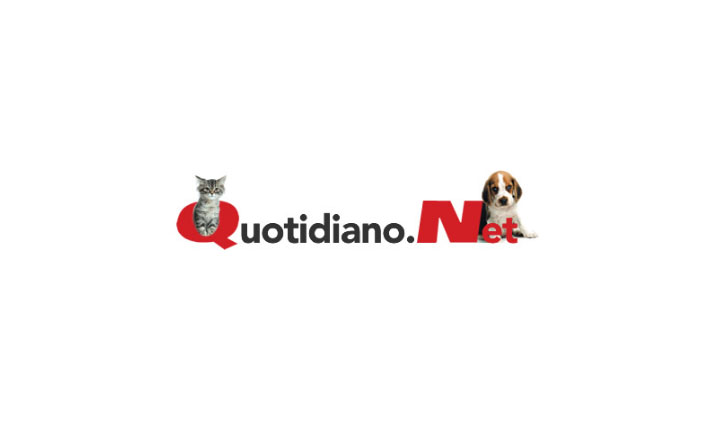 quotidianonet